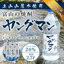 焼酎甲類 1ケース(6本) 【激安】 富山の甲類焼酎 20% ヤングマン 2.7L 【同梱不可】【業務用向け】 焼酎甲類