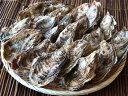 厚岸中嶋孝志さんの特大殻付牡蠣20個入(特大サイズ)