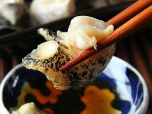 北海道産お刺身用ボイルつぶ貝500g入(250g2パック/急速冷凍)【A】