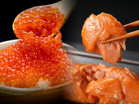いくら昆布醤油漬140g入と旨塩時鮭2切入セット(急速冷凍)【A】