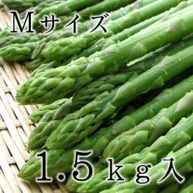 【送料込】美唄産グリーンアスパラMサイズ1.5kg入※お届け日指定不可【I】
