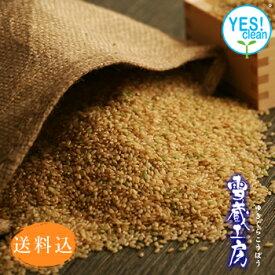 【送料込】【減農薬】北海道美唄産「おぼろづき」玄米5kg入【雪蔵工房】【H】
