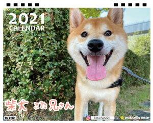 【予約販売】 柴犬 こた兄さん 2021年 卓上カレンダー TC21101