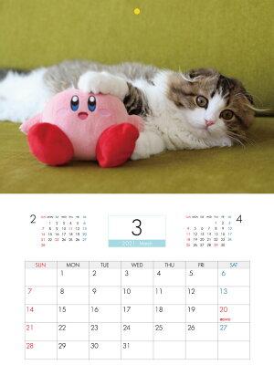 【予約販売】猫のふわふわこっちゃん2021年壁掛けカレンダーKK21046