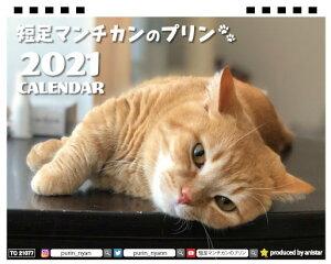 【予約販売】短足マンチカンのプリン2021年卓上カレンダーTC21077