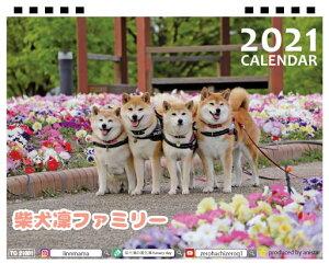 【予約販売】 柴犬 LINNファミリー 2021年 卓上カレンダー TC21085