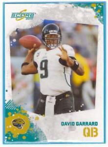 【送料無料】スポーツ メモリアル カード パニーニスコアフットボールマップデビッドガラードpanini score 2010 nfl football map nr131 david garrard