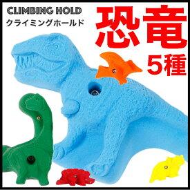 【Boltタイプ】 5 XL ダイナソー (恐竜) - 5 Pack Dinosaurs クライミングホールド【ティガレックス、アウトドア、自宅、壁をプライベートウォール、丈夫で安心、可愛い形状、ボルダリング、子供も遊びやすい】