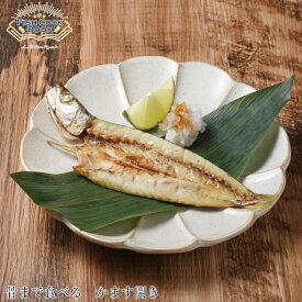 【レターパック対応】Fish Cook Book 骨まで食べるかます ラッキーシール対応