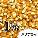 ポップコーン豆1kg【バタフライ種】