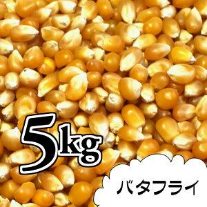 ポップコーン豆5kg【バタフライ種】