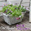 """マグネシウムプランター """"Old Basket""""(オールドバスケット) 【 送料無料 コンテナガーデン ガーデンポッド プランタ…"""