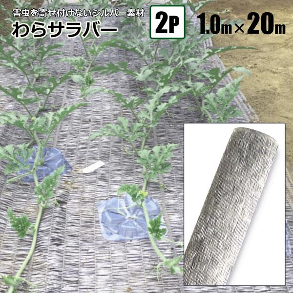 シンセイ わらサラバー 1m×20m 2本組 シルバー 防虫効果 敷きわらの代わりに 送料無料