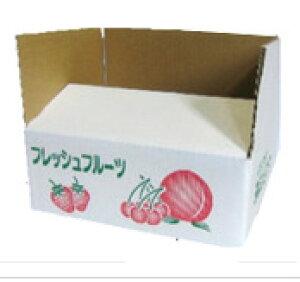 フレッシュフルーツ段ボール 2Kg用 (20枚入り)
