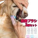 ペット用 指歯ブラシ シリコン製 3個セット ソフトブラシ 収納ケース付き 口腔ケア 犬用歯ブラシ 犬 いぬ 猫 ねこ 犬…