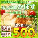 500 kabosu001