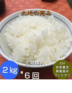 【年間契約】「大地の恵」2kg・6回発送/令和二年産 新米 ・EM農法・無農薬栽培米こしひかり[一括払い](定期購入)新米は9月30日からの出荷になります。