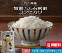 お米 送料無料 10kg こしひかり 「加賀百万石厳選」 白米 玄米 5分づき精米 無洗米 からお選びください。 令和元年産 新米・石川県産