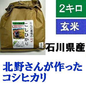 【送料無料】お試し版・「北野さんのこしひかり」玄米 2kg・令和元年産 新米 コシヒカリ・石川県産