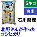 送料無料「北野さんのこしひかり」白米 5kg・令和元年産 新米 コシヒカリ・石川県産