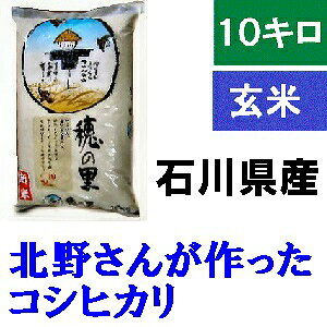 送料無料「北野さんのこしひかり」白米 10kg・令和2年産 新米 コシヒカリ・石川県産