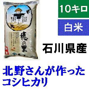 送料無料「北野さんのこしひかり」玄米 10kg・令和元年産 新米 コシヒカリ・石川県産