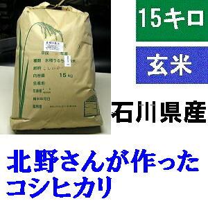 送料無料 「北野さんのこしひかり」玄米 15kg・令和2年産 コシヒカリ・石川県産