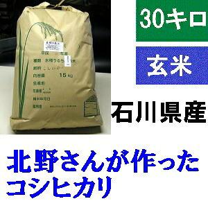 送料無料 「北野さんのこしひかり」玄米 30kg・令和2年産 コシヒカリ・石川県産