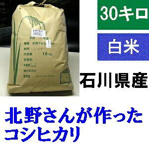 送料無料 「北野さんのこしひかり」白米 30kg・令和元年産 新米 コシヒカリ・石川県産