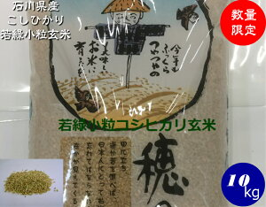 送料無料 令和2年産 コシヒカリ若緑小粒玄米 10kg