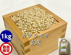 もち米・玄米1kg(カグラもち)[餅米・モチ等販売]
