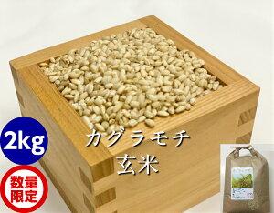 カグラもち玄米2kg
