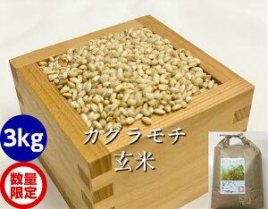 もち米・玄米3kg(カグラもち)[餅米・モチ等販売]