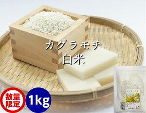 送料無料 もち米・白米 1kg(カグラもち)[餅米・モチ等販売]