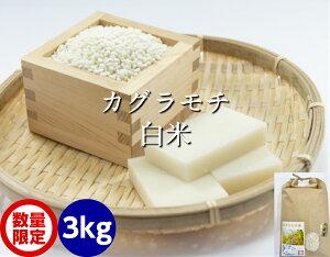 送料無料 もち米・白米 3kg(カグラもち)[餅米・モチ等販売]