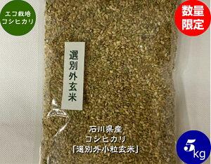 送料無料 令和2年産 エコ栽培米コシヒカリ「選別外小粒玄米」 5kg 宅配便