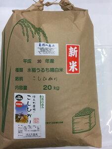 令和3年産 新米 送料無料 米 20kg 白米 玄米 5分づき精米 からお選びください。特別栽培米 「自然農法米 こしひかり 自然の恵み」 減農薬・石川県産[減農薬、コシヒカリ、自然農法、お米、