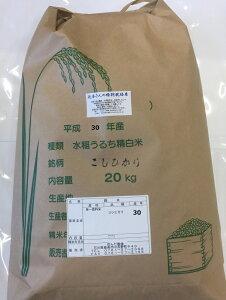 お米 20kg 送料無料 令和2年産 新米・辻本さんの特別栽培米こしひかり 白米 玄米 5分搗き精米 からお選びください コシヒカリ 天皇献上米 母の日 父の日 ギフト
