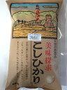 令和元年産 新米 辻本さんの特別栽培米こしひかり 白米・食用玄米・5分搗き精米 10kg