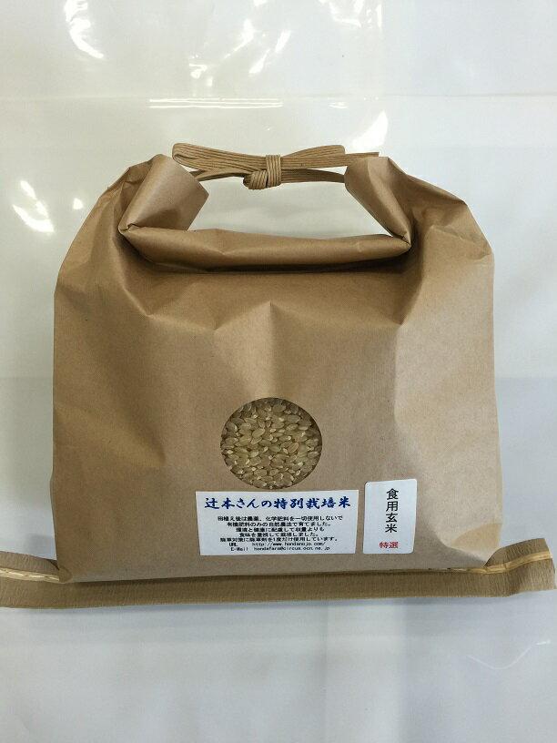 【送料無料】 お米 30年産新米 辻本さんの特別栽培米こしひかり 白米・食用玄米・5分搗き精米 2kg からお選びください。【blank】 母の日 天皇献上米