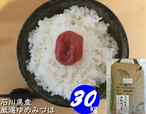 お米 送料無料 30kg 新米 令和元年産 「加賀厳選米 ゆめみづほ」白米 玄米 5分づき精米 無洗米 からお選びください。 石川県産