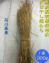 送料無料 「無農薬米・有機栽培米 の稲藁 300g「1束」[稲藁、稲わら、稲ワラ、わら、藁、籾殻、もみ殻、等販売]「…