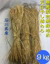 【送料無料】《稲わら》「無農薬米・有機栽培米 の稲藁「わら」9kg(約30束)石川県産」[稲藁、稲わら、稲ワラ、わら…
