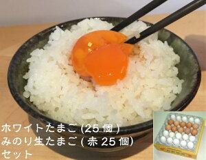 送料無料 贈答用 美野里たまご紅白トレイ詰めBセット「卵、たまご、タマゴ、贈答用」ほわいとたまご25個とみのり生たまご(赤25個)セット 黄身もふっくら 玉子かけごはん 玉子とじ レシ