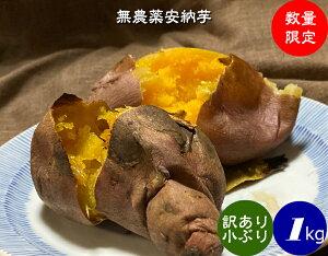 送料無料 無農薬 EM農法 わけあり 安納芋(さつまいも)1袋1kg【無農薬 さつまいも 安納芋 国産 石川県産・EM菌】
