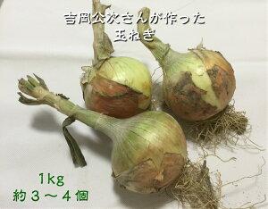 送料無料 野菜吉岡さんの玉ねぎ 1kg令和3年産 国産 石川県産 玉ねぎ