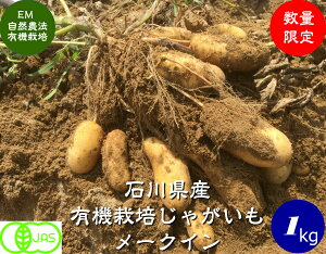 【送料無料】有機 野菜 じゃがいも(メークイン)1kg《JAS》EM農法[無農薬、有機 ジャガイモ、EM菌]