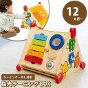 【あす楽】木のおもちゃ 知育玩具 指先ラーニングBOX IM-30090 エデュテ Edute 誕生日 1歳 プレゼント 男の子 女の子 …