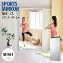 鏡 割れない 高精細 おまけ付 壁掛け姿見 スポーツミラー 壁面式 90×180cm リフェクス REFEX RM-12 鏡 全身鏡 姿見 …