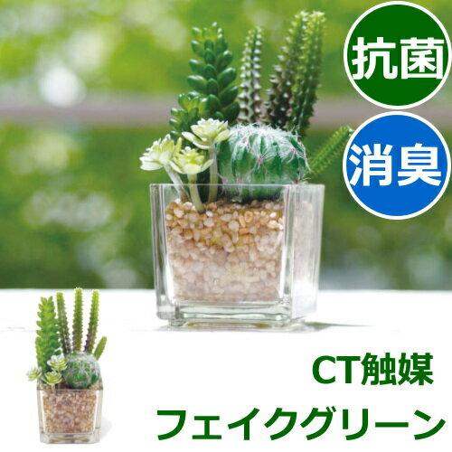 フェイクグリーン ミニ CT触媒(消臭・抗菌・防汚) 多肉植物 造花(葉っぱ) インテリアグリーン サキュレントリフレリウム 消臭アーティフィシャルグリーン